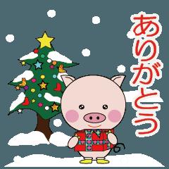 子ブタちゃんの生活 part3 クリスマス編
