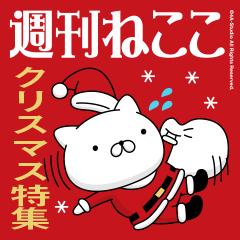 週刊ねここ♪クリスマス特集
