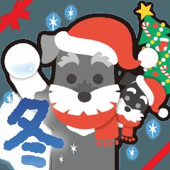【雪合戦】シュナのつな子 11 冬編
