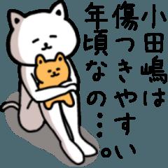 【小田嶋】さんが使える名前スタンプ
