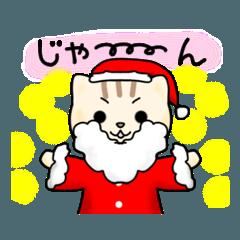ソラネコ&カリネコ クリスマス