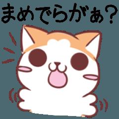 秋田弁のわんことフェレット3