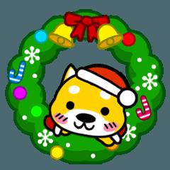 僕を飼ってくだちゃいぬ。★クリスマス編