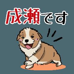 成瀬さん用の名前スタンプ・子犬イラスト