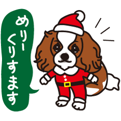 [LINEスタンプ] ラブとすてきなクリスマス(キャバリア)の画像(メイン)