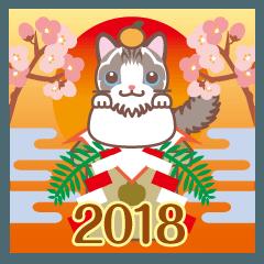 NEW YEAR 2018〜ふわふわのラグドール