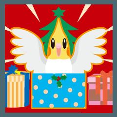 クリスマスと年末〜オカメインコ