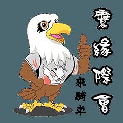 4+2 eagle