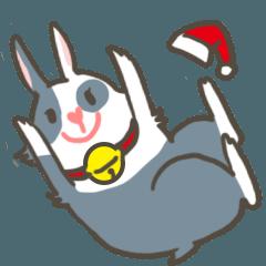 Qiu Guo's daily(Christmas edition)