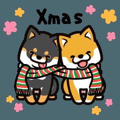 柴犬マロンともものクリスマス