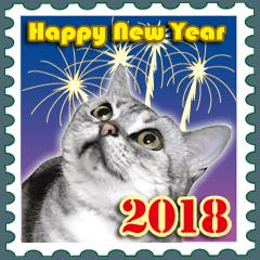 2018 Happy New Year〜アメショーと一緒