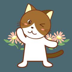 ネコの英語スタンプ