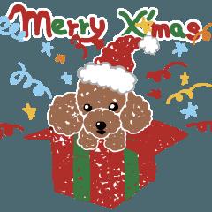[LINEスタンプ] トイ・プードルのクリスマス
