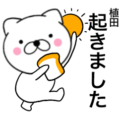 【植田】が使う主婦が作ったデカ文字ネコ