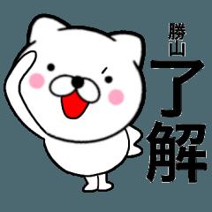 【勝山】が使う主婦が作ったデカ文字ネコ