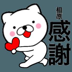 【相原】が使う主婦が作ったデカ文字ネコ