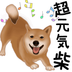 [LINEスタンプ] 元気いっぱいの柴犬