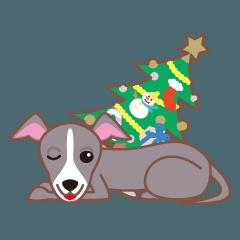 クリスマスと年末 〜イタグレと車