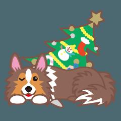 クリスマスと年末 〜シェルティと車