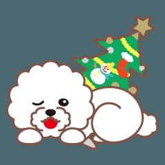 クリスマスと年末 〜ビションフリーゼと車