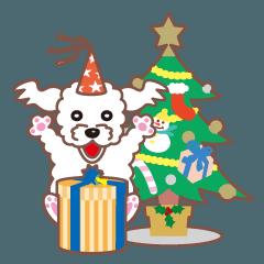 クリスマスと年末 〜トイプードル