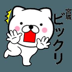 【宮城】が使う主婦が作ったデカ文字ネコ