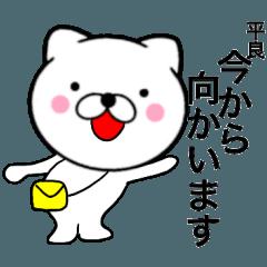 【平良】が使う主婦が作ったデカ文字ネコ