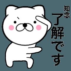 【知念】が使う主婦が作ったデカ文字ネコ