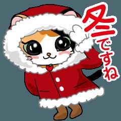 三毛猫ちゃん! 冬バージョン♪