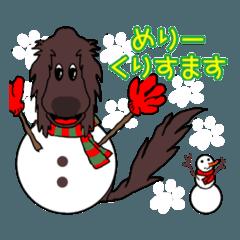フラットコーテッドのクリスマス&新年 Ⅰ