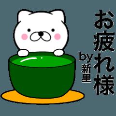 【新里】が使う主婦が作ったデカ文字ネコ