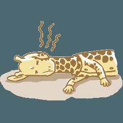 Mr. Giraffe Vol.2