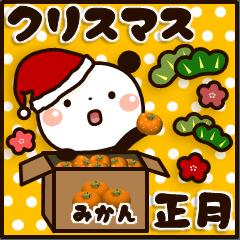 ぱんちゃんの冬【クリスマス&正月】