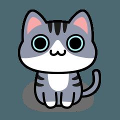 ウノ キャット No.03 Basic Sticker