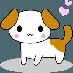 かわいい子犬「ワンコ」の日記