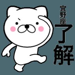 【宜野座】が使う主婦が作ったデカ文字ネコ