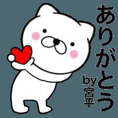 【宮平】が使う主婦が作ったデカ文字ネコ