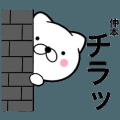 【仲本】が使う主婦が作ったデカ文字ネコ