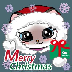 シャム猫ちゃん! クリスマスバージョン♪