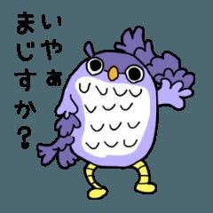 フクロウ!?