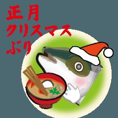 正月クリスマスぶり(香川県出身鰤19弾)