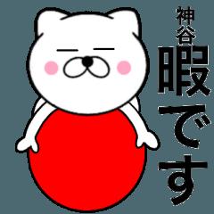【神谷】が使う主婦が作ったデカ文字ネコ1