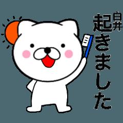 【白井】が使う主婦が作ったデカ文字ネコ