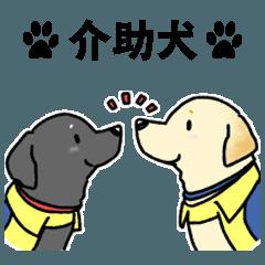 介助犬かわいいラブちゃんスタンプ2英語版