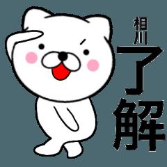【相川】が使う主婦が作ったデカ文字ネコ