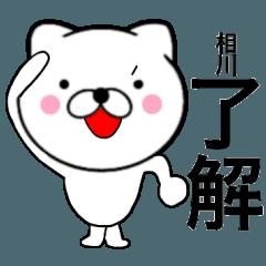 【相川】が使う主婦が作ったデカ文字ネコ2