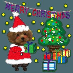 クリスマス&お正月♪わんこの年末年始