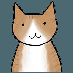 ネコのチャコちゃん