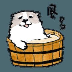ふわもこ和風お犬さま 関西弁日常会話