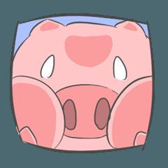 Little Pig - Fafa
